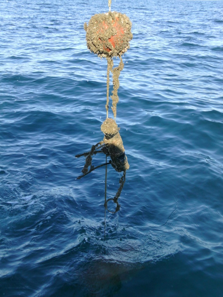 This is what one of the receivers looks like after 3-5 months under water.